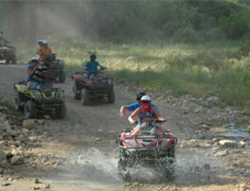 Quad & Buggy Safari